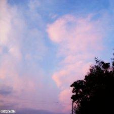 20120518_001.jpg